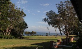Currarong N.S.W  & surrounding areas, Beautiful and very dog friendly !!!